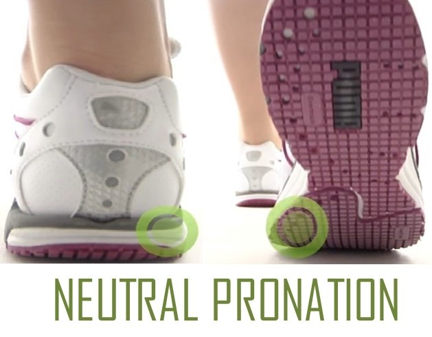 NEUTRAL PRONATION OF THE FOOT