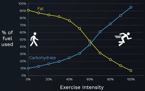 exercise-intensity-%-of-fuel-used