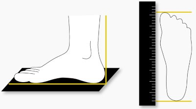 how-to-measure-your-feet